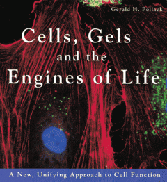 BOOK REVIEW | Cells, Gels, and the Engines of Life by Gerald H. Pollack Thumbnail